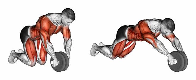 Упражнения с тренажером «колесо»